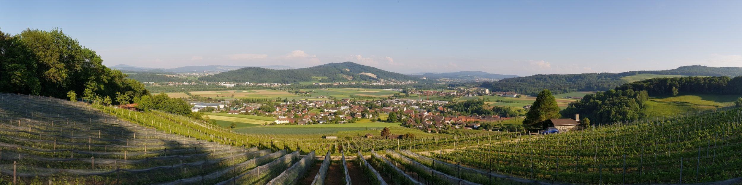 Räbhüsli-Fescht Schinznach-Dorf